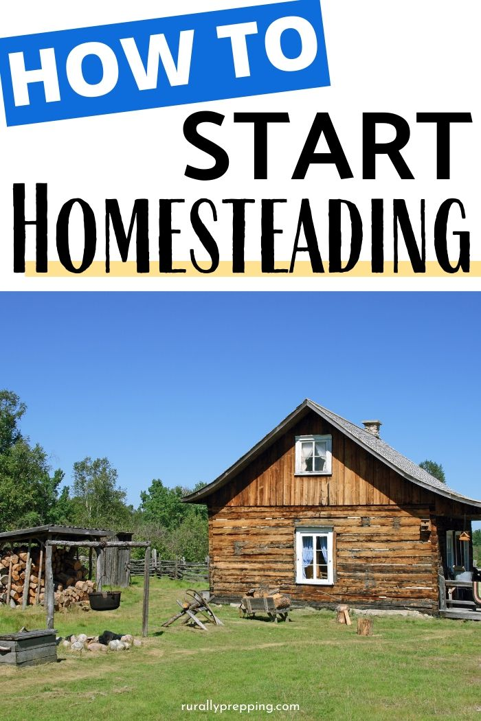 picture of a cabin on a homestead with the words how to start homesteading above it