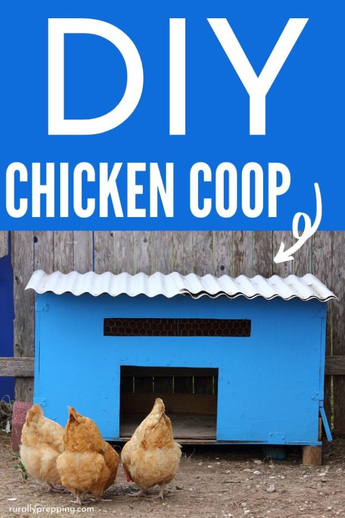 blue homemade chicken coop with 3 chickens in front of it DIY Chicken Coop is in white text across the top