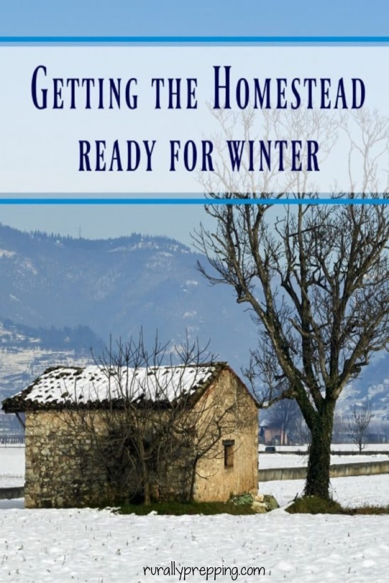 a rundown structure beside a bare tree with snow on the ground. Mountain in the background. Text on t says getting the homestead ready for winter