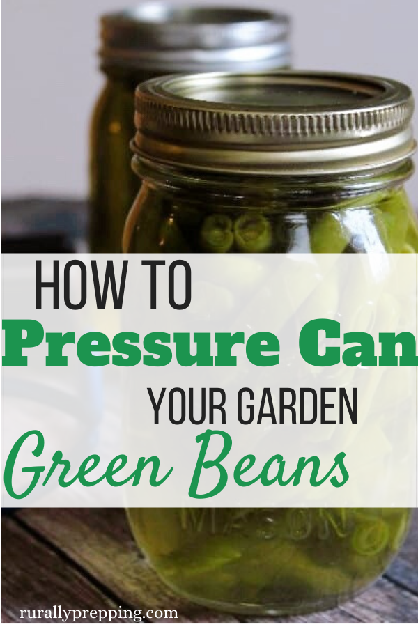 canned green beans in a mason jar with text that says how to pressure can your garden green beans