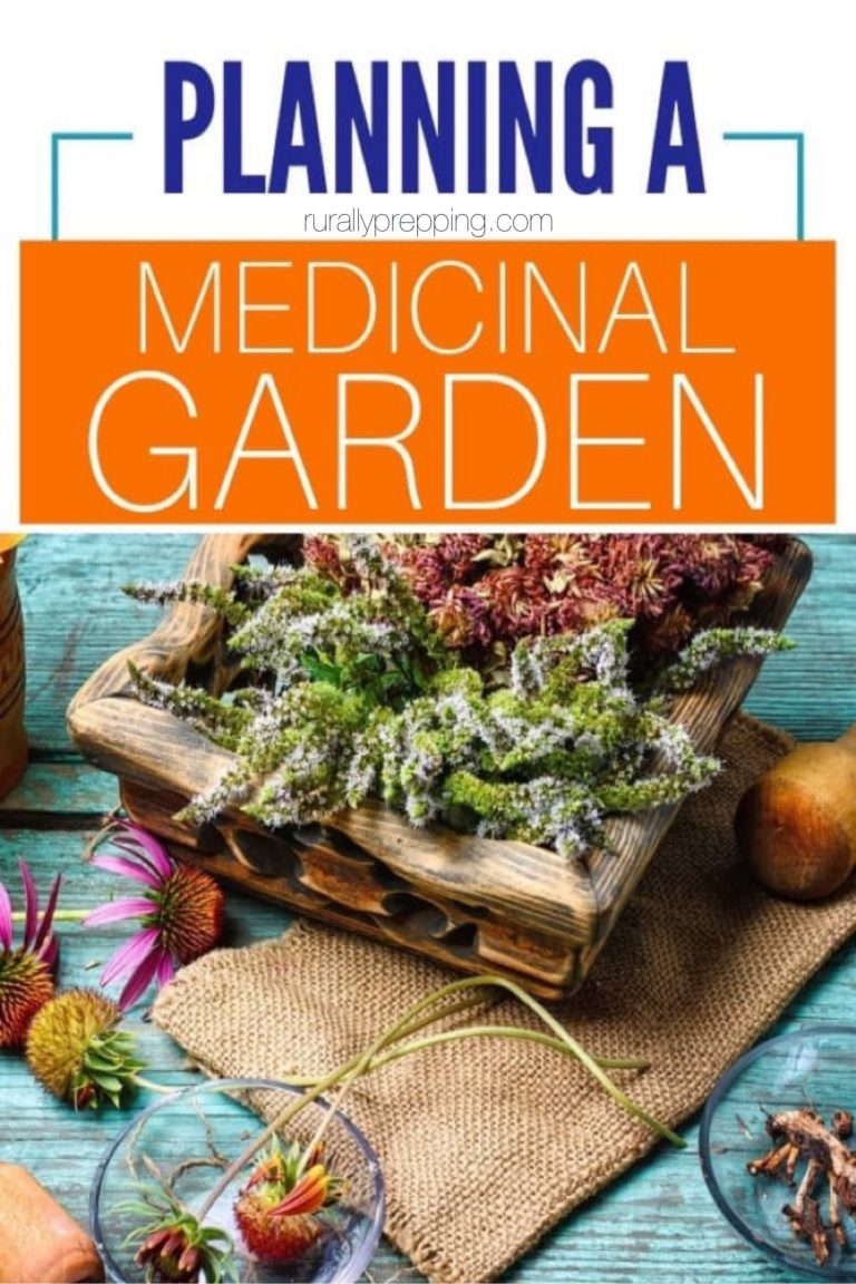 dried medicinal plants in a bowl with the text planning a medicinal garden over it