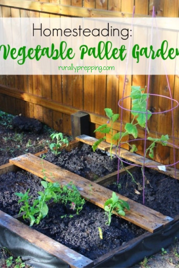 a pallet that has been turned into a pallet vegetable garden